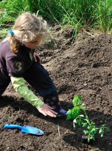 Apprendre à jardiner avec Jardicoach