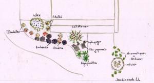 Plan de masse petit jardin