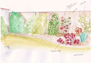 Projet de clôture bois et implantation  végétaux