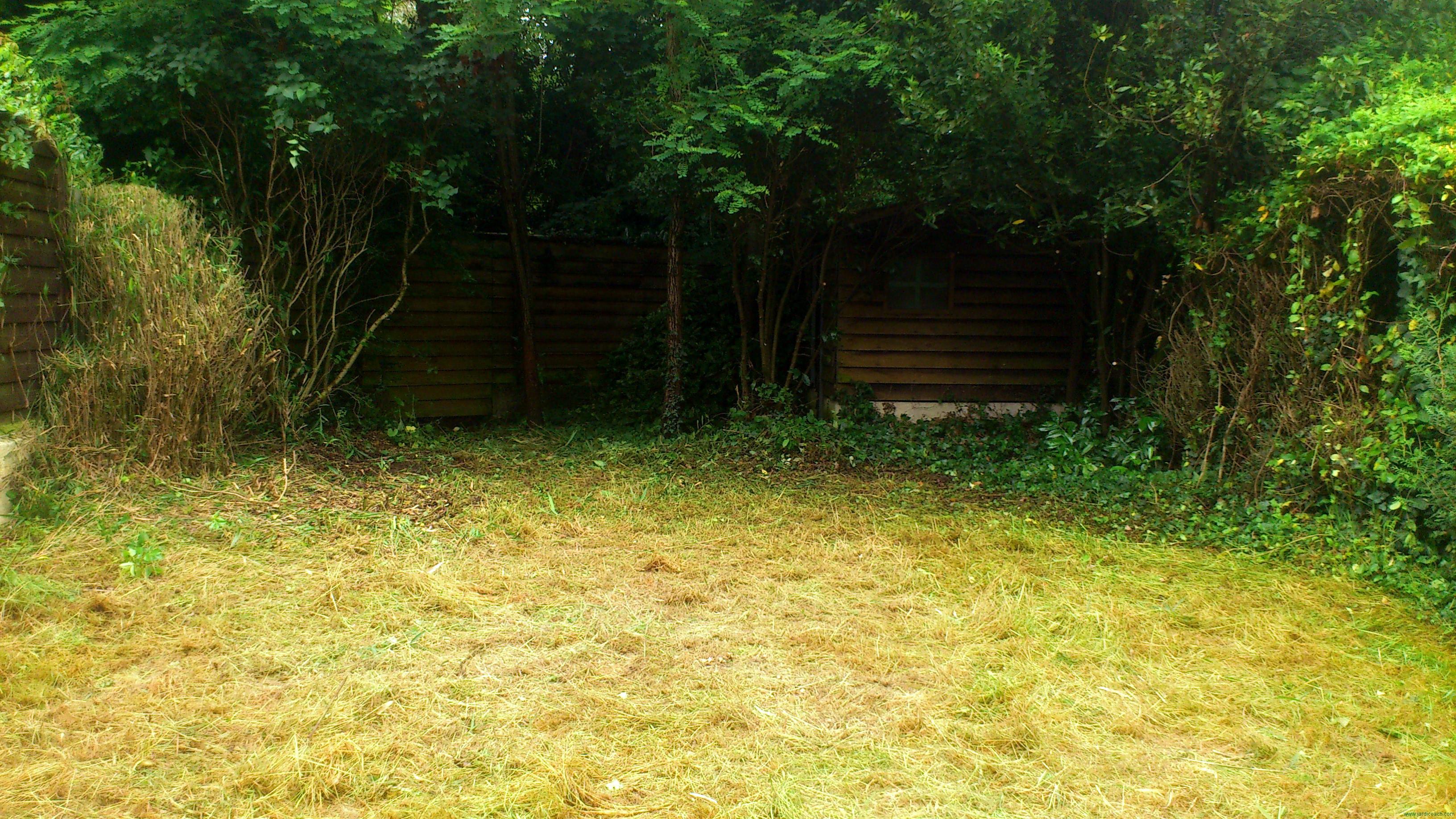 Remise en tat d 39 un jardin non entretenu for Debroussaillage jardin